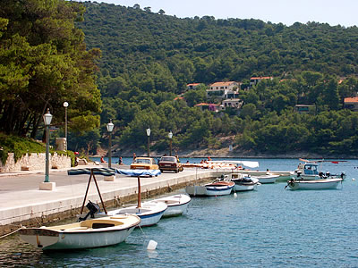 Pucisca Croatia - Pucisca Brac - Pucisca Hotels - Pucisca apartmants - Pucisca accommodation Pucisca travel agency Lotos Brac Split Riviera