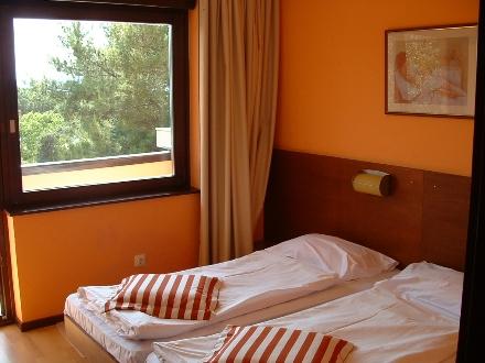Croatia  Zadar Hotel Donat Zadar Hotel Donat Accommodation Zadar Hotel Donat Rooms Zadar Hotel Donat Apartments  Zadar Hotel Donat Wellness Zadar Hotel Donat Conferences Zadar Hotel team building travel agency Lotos Zadar Riviera