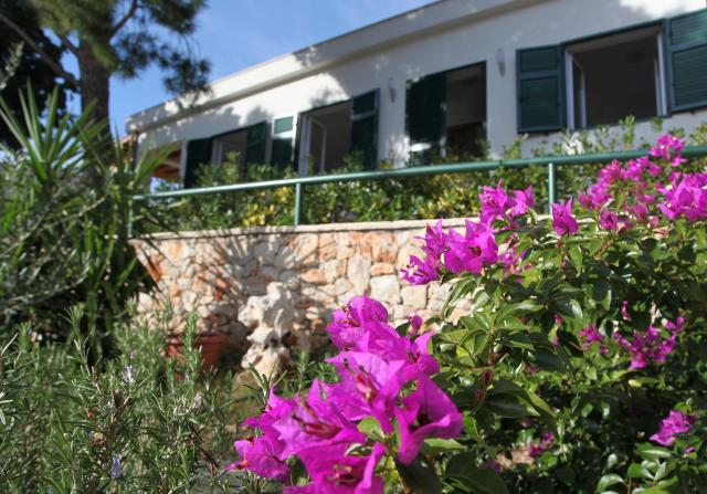 apartments Croatia VILLA IDA